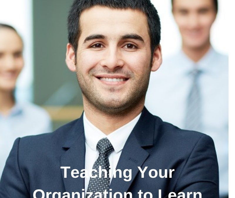 Teaching Your Organization to Learn